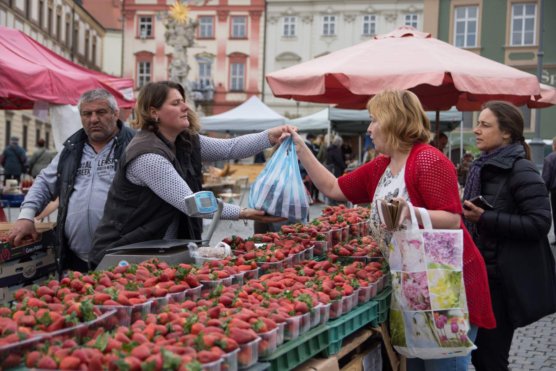 O stánek s jahodami projevili zákazníci v průběhu dne velký zájem. Foto: Markéta Sulková