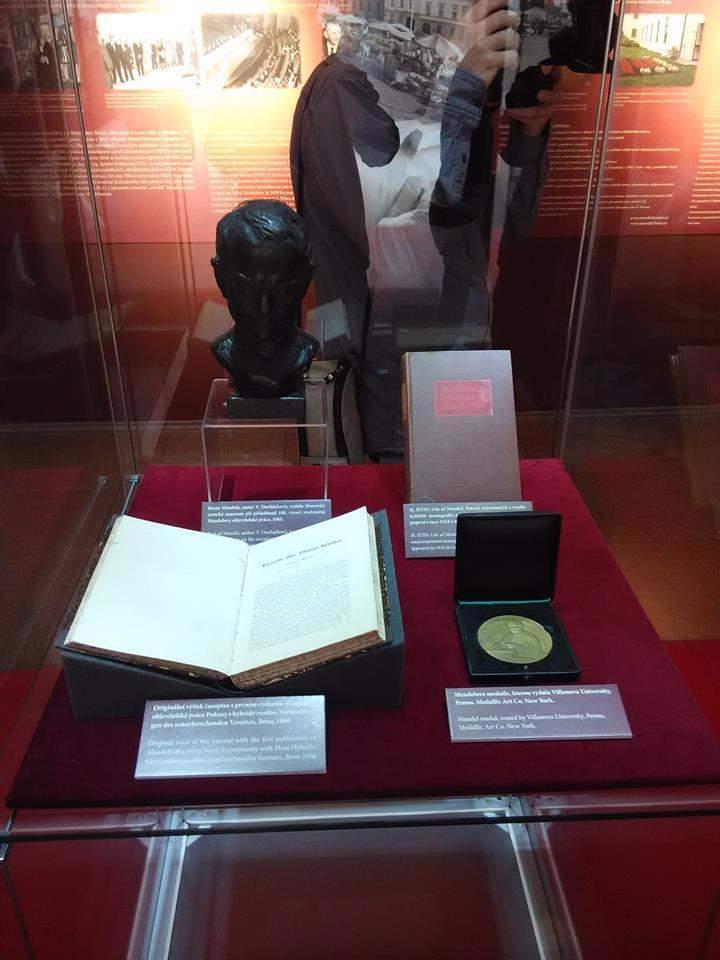 Mezi exponáty je například Mendelova busta nebo originální výtisk časopisu z roku 1866, ve kterém vyšla jeho přednáška. FOTO: Michael Malík