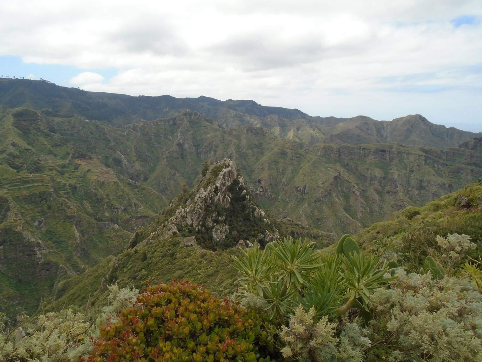 Tenerife není jen moře - ve středu ostrova je velký národní park. | FOTO: Jana Kmecová