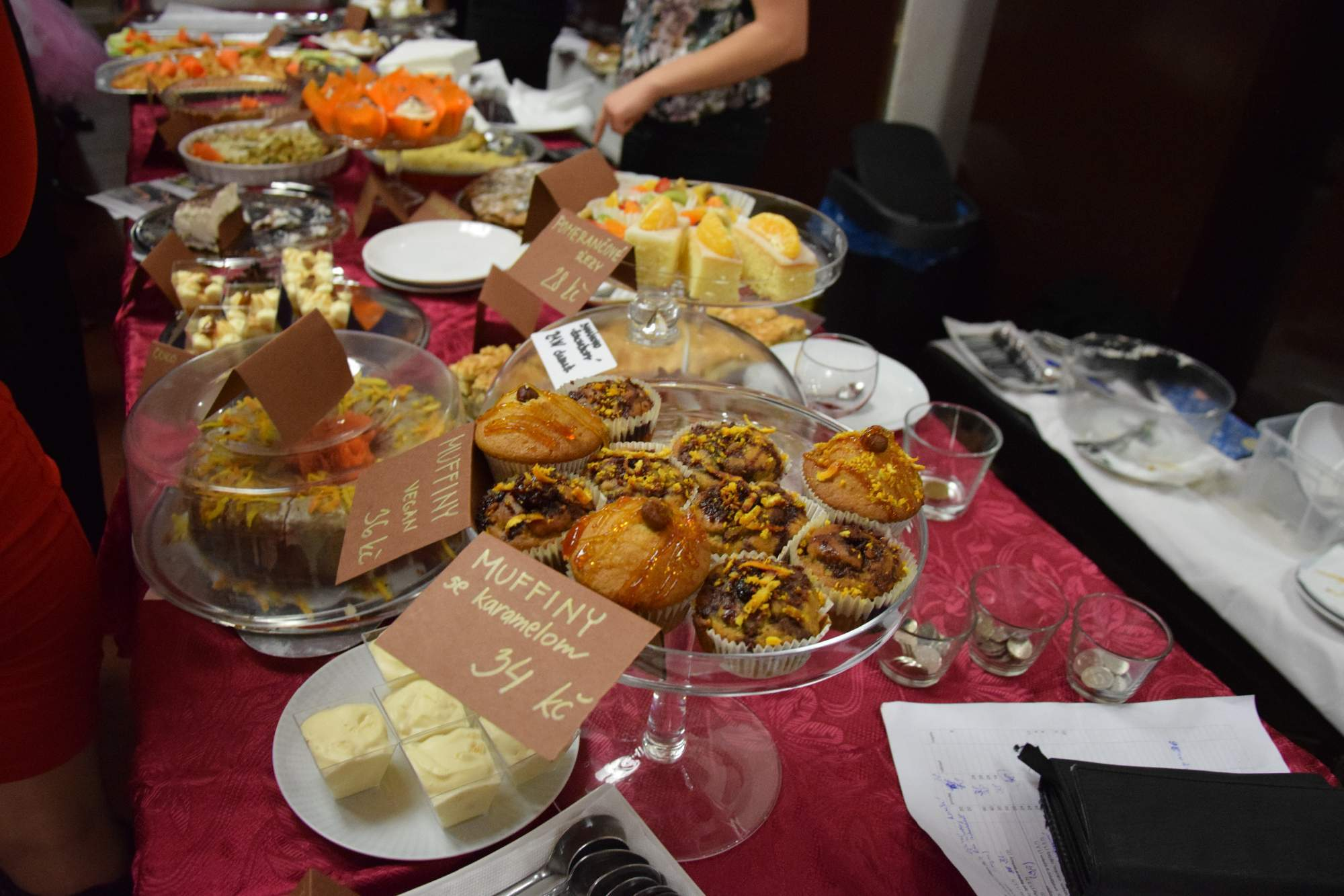 Pro účastníky bylo připraveno občerstvení. Foto: Tereza Kučerová