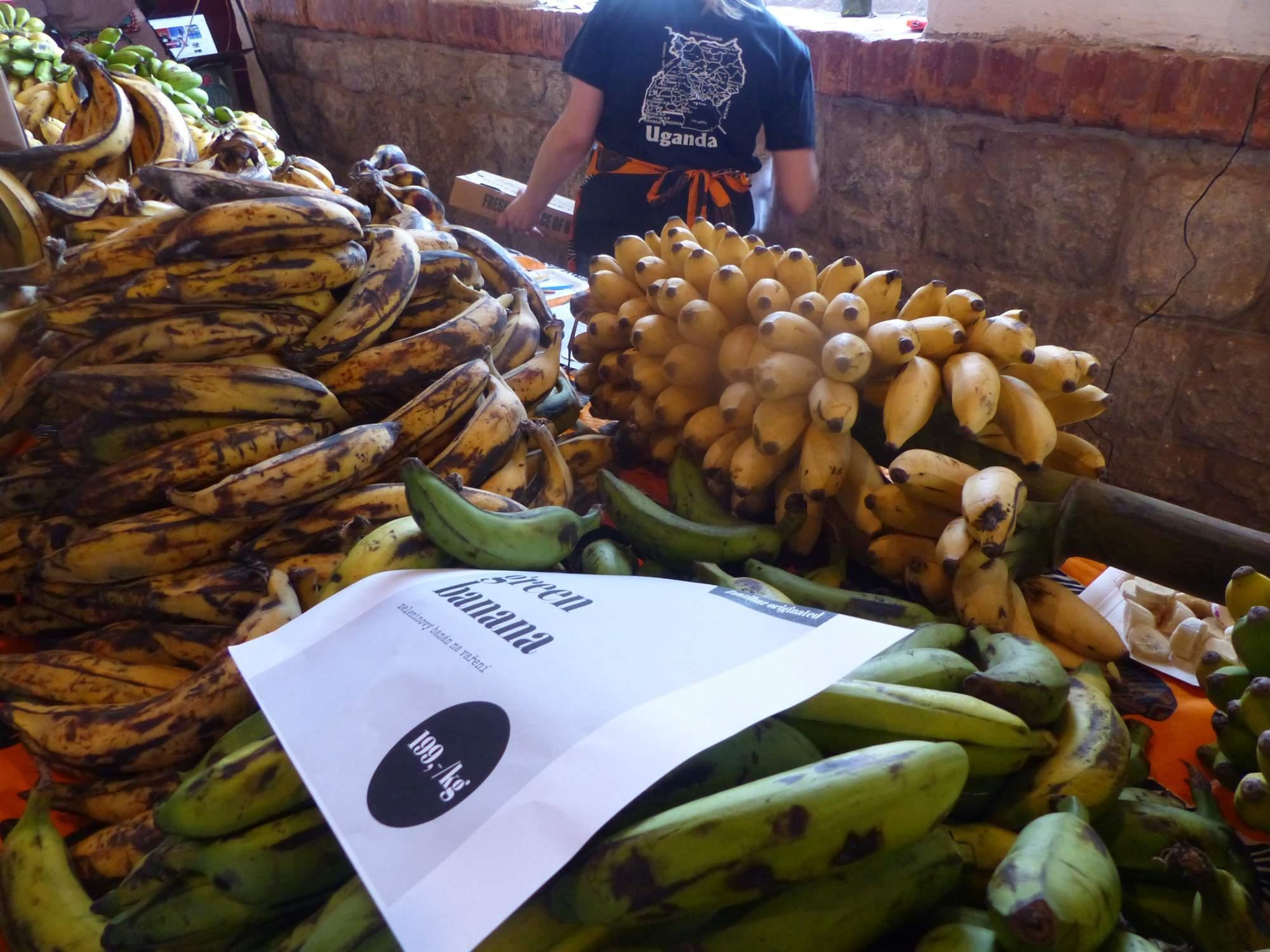 Banány z Ugandy. Foto: Tereza Kučerová