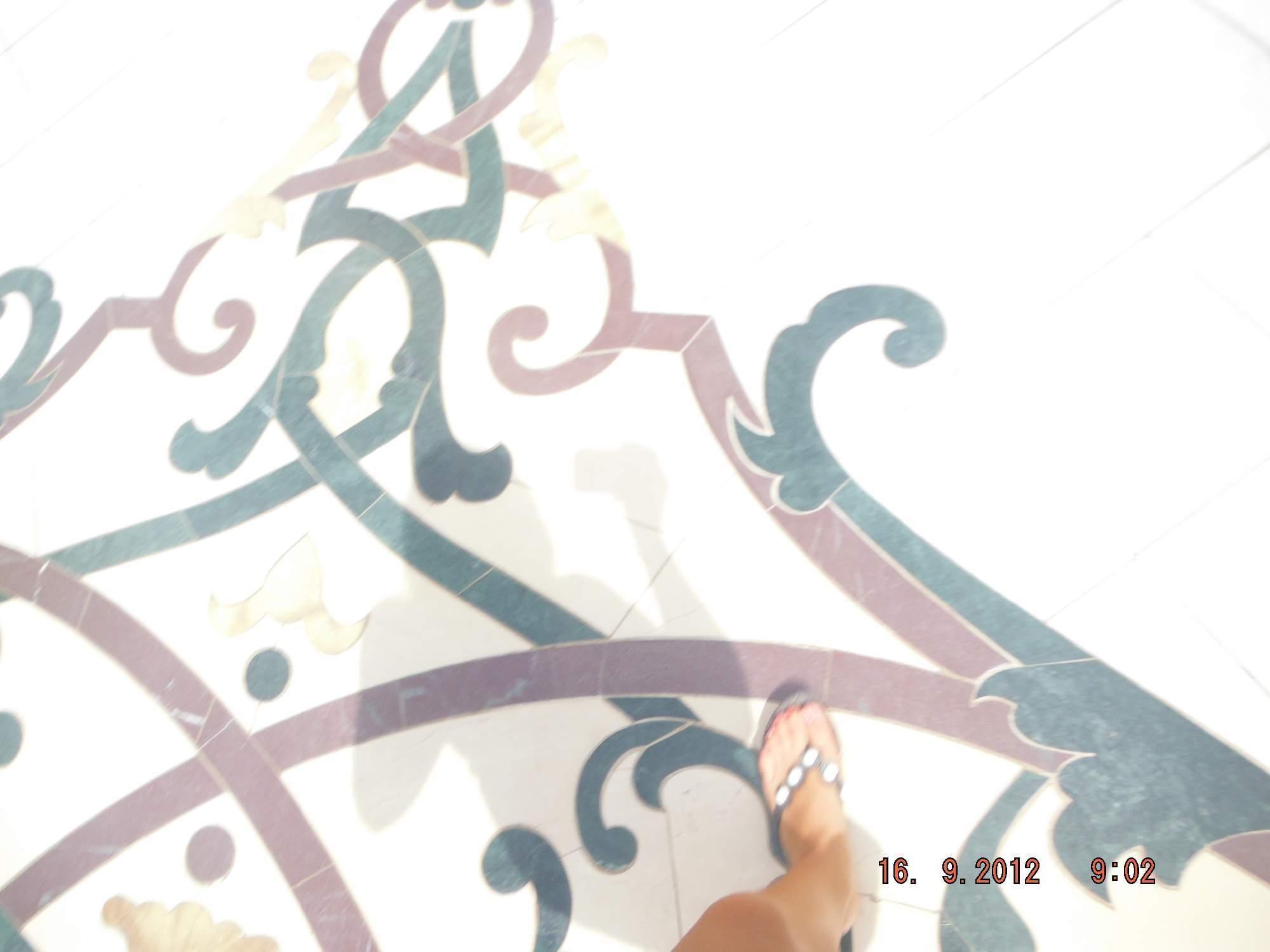 http://img24.rajce.idnes.cz/d2403/13/13214/13214242_a1e43f49e51a1daa7632f800d4edae3f/images/SAE362.jpg