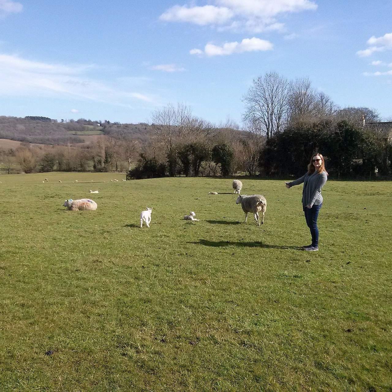 Farma ve Velké Británii. FOTO: Michaela Střížová
