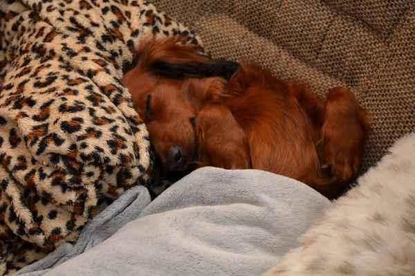 A pohledem na spokojeně spící Julinku se loučím a přeji pohodový srpnový víkend. :-)