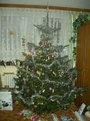 Snímek 001 - Vánoce 2010