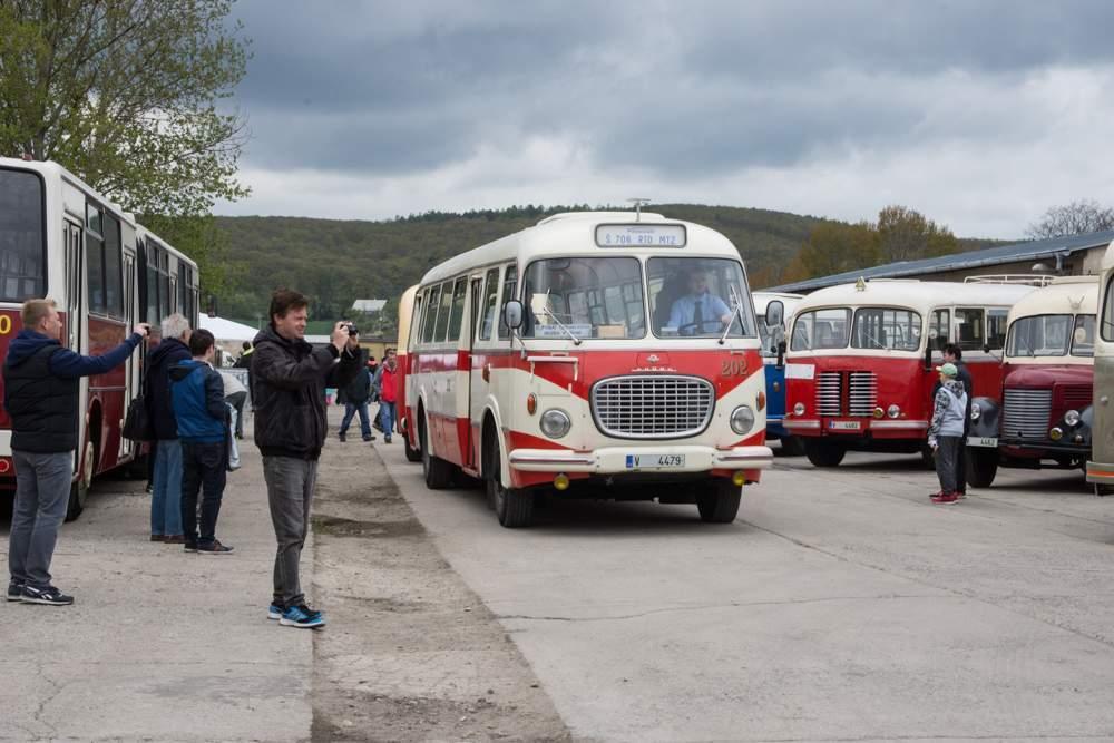 Návštěvníci mohli vidět řadu historických autobusů. Foto: Markéta Sulková