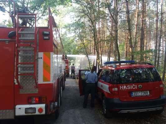 Požár lesa k Hornické